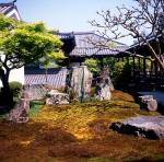 Nanzen-ji moss